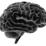 BW Brain